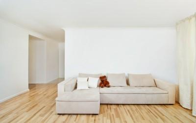 Jak vybrat vhodnou lamin tovou plovouc podlahu bytov - Alternative uses for formal living room ...